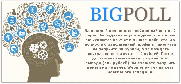 Платные опросы от проекта BigPoll.