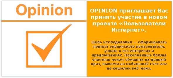 «Пользователи Интернет» – новый проект от опросника Opinion.