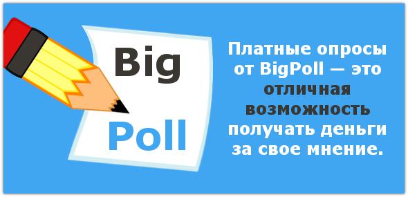 BigPoll – платные опросы онлайн для жителей Российской Федерации.